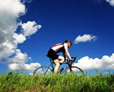Rogla je idealna destinacija kad je u pitanju bicikliranje